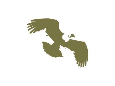 Eagle mountain capital peter vasvari