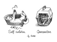 self isolation vs quarantine caricature illness virus covid19 kitten cat ink art comic bw animal childish illustration