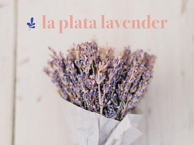 Lavender Farm Logo minimalist logo purple logo branding flower logo flower illustration floral logo pink logo feminine logo farm logo lavender logo lavender