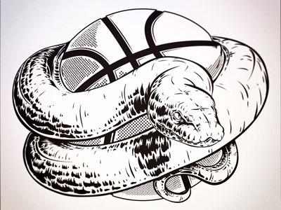 Python Closeup snake illustration basketball python
