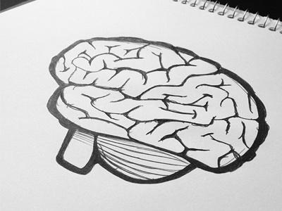 Brain Sketch brain sketch hand drawn illustration drawing vector paper pen icon