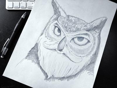 Warmup Sketch: Bearded Owl  portrait beard owl bird sketch pencil black and white photo warmup wildllfe