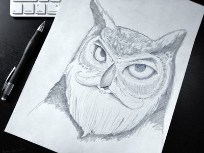 Warmup Sketch: Bearded Owl  portrait beard owl bird sketch pencil black and white photo warmup wildllfe