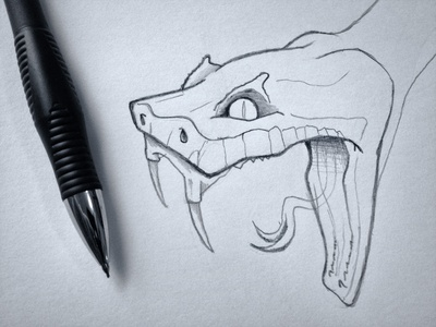 Snake Head Sketch sketch reptile snake black and white photo line work illustration pencil