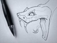 Snake Head Sketch
