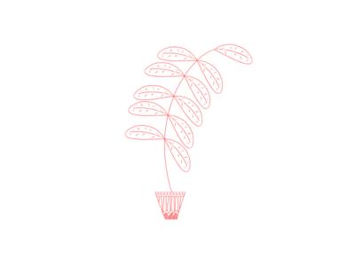 Plant Doodle photoshop line drawing fern illustration plant