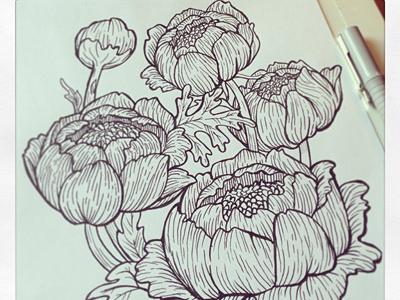 Sketchflowers
