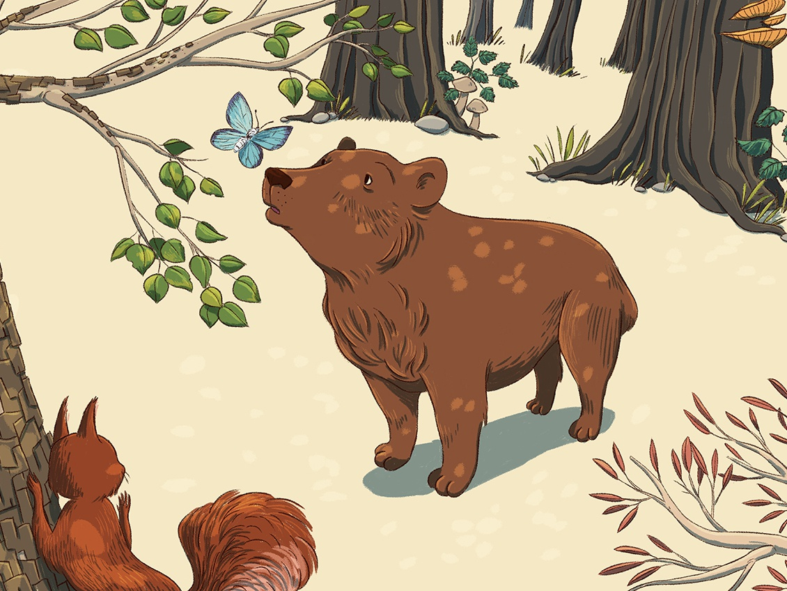 Who are you? butterfly trees wildlife forest bear childrens illustration bear illustration digital illustration illustration