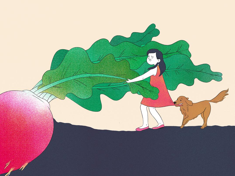The Giant Radish childrens illustration dog childrens stories radish the giant radish digital illustration illustration art illustration