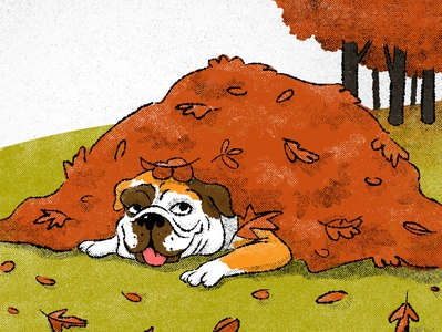 Hard at work english bulldog retro illustration retro autumn leaves autumn dog digital illustration childrens illustration illustration