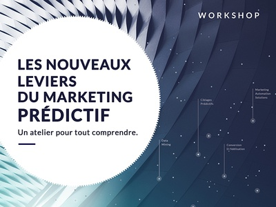 Mediego Workshop rennes predictive mining marketing data purple poster workshop