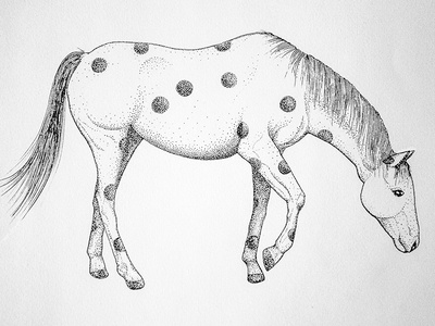 sketch horse art dotart illustration rennes pointillism dot sketch horse ink drawing