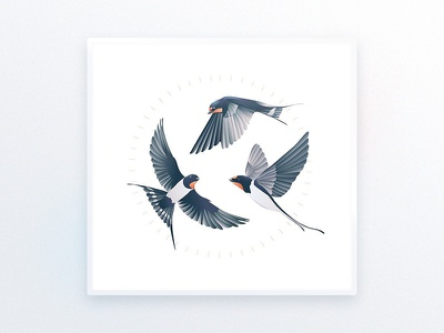 Swallows l Illustration illustrator interior design goods tattoo swallows design luxury ui illustration art bird drawing delicate decoration picture illustration