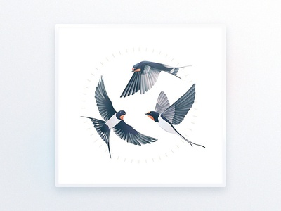 Swallows l Illustration illustrator interior design goods tattoo swallows design luxury ui illustration art bird drawing delicate decoration picture illustration