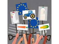 'How to fix European Farming' for Politico