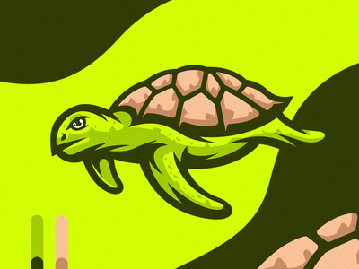 Green Turtle Illustration vector drawing detailed design illustration green turtle