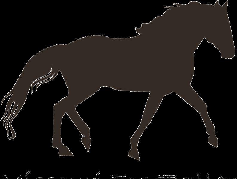 Missouri Foxtrotter Silhouette logo vector graphic gaited horse illustration