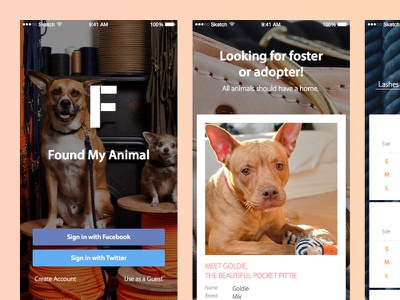 FoundMyAnimal Redesign Concept dog puppy ecommerce
