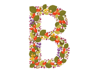 B Is For Berry