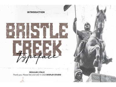 Bristle Creek Font logotype typeface italic branding fonts font decorative display bristle creek