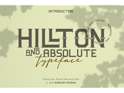 Hillton and Absolute Font italic fonts font design clothing logotype invitation typeface branding serif hillton and absolute