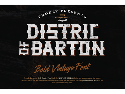 Distric of Barthon Font italic font logotype branding display fonts bold vintage distric of barthon