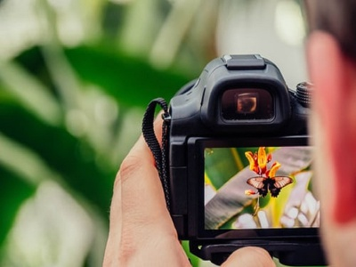 How To Make Photography Your Hobby capture memories