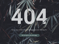 404 Page clean ux ui web web design user experience user interface 404