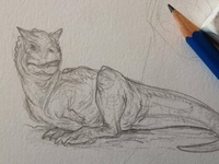 Little Carnotaurus sketch