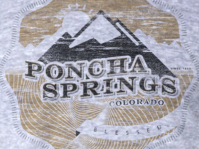 BLESSED tee blessed poncha springs colorado texture money mountains
