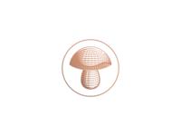 Bolete Mushroom  |  Nikola Lackovic personal identity video youtube outdoors lettering monogram nature wild woods fungi porcini lineart design branding illustration minimal logo