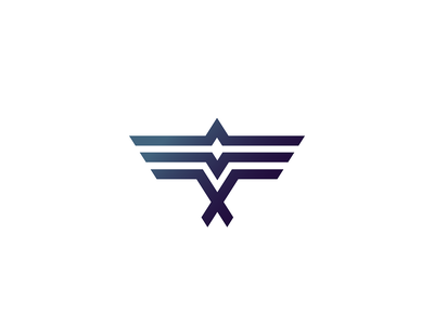 Bird visual identity icon mark minimal logo branding illustration geometry dynamic movement aerodynamic wing plane eagle hawk flying