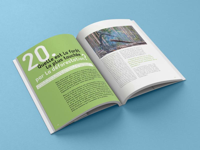 "Livre ""50 questions sur la Terre"" questions earth editorial book graphic graphicdesign graphisme graphism edition editorial design"