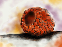 Raspberry - Paper on iPad