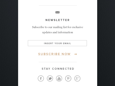 Vertical navigation side bar newsletter subscription social media vertical navigation