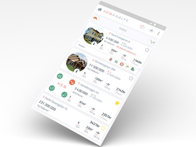 HEMAnalys Real Estete Property App Concept