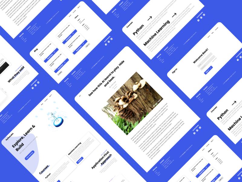 Pytholabs Redesign Concept web app design webdesigner concept uidesign webdesign