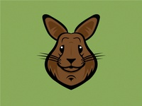 Hoagie The Rabbit