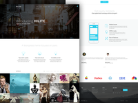 Wordpress theme landing page