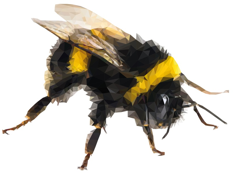 Bumble Bee wildlife polygonal nature bee illustration