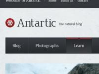 Antartic: Blog Theme #1
