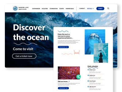 Marine Life Institute's website web design ux webdesign graphic design design ui