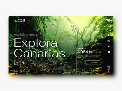 Canary Islands' tourism website 03 ux web design webdesign design graphic design ui