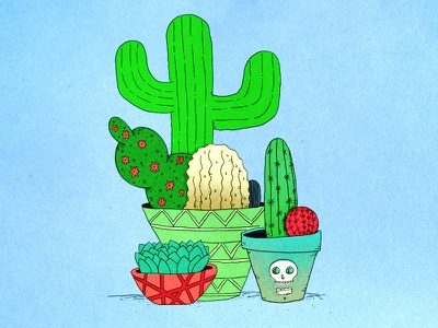 Succulent Illustration cactus succulent illustration digital plants