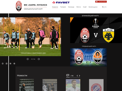 FC Zorya Lugansk ux ui web design
