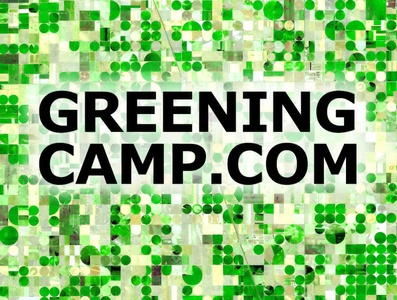 Trillion Trees Initiative Greening Camp trillion trees forests logo design graphics graphic design campaign initiative camp green logo environmental green icon logo design