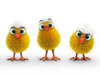 Chick moods