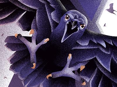 Raven illustration design noise effect digital illustration illustration art crow attacking crow raven editorial illustration euroman illustration