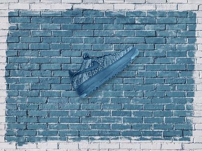 Shoe Photoshop photoshop design