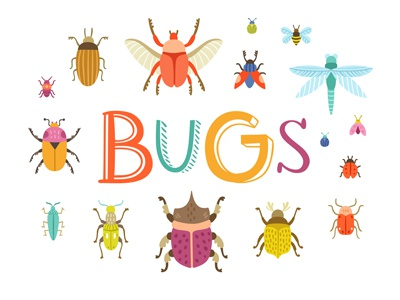 Bugs illustration bugs colorful collection